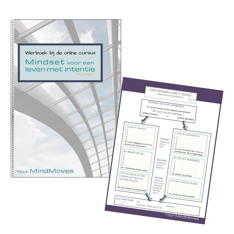 werkboek online cursus mindset